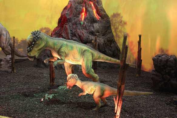 pachycephalosaurus v1) BD